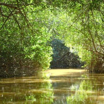 Rio Esperanza