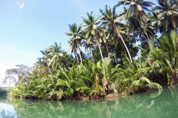Loboc River, Bohol